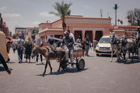 marrakech_reiseblog_48